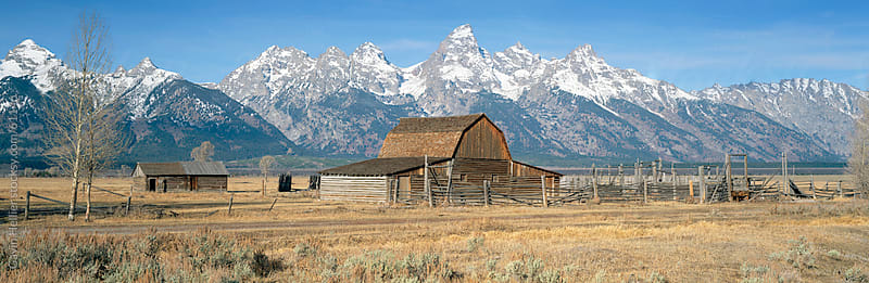 Barn in a field, Grand Teton National Park, Moose, Jackson Hole Valley, Wyoming, USA by Gavin Hellier for Stocksy United