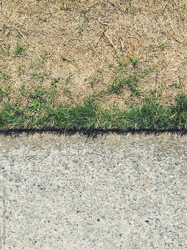 Close up of urban sidewalk and brown grass from drought by Paul Edmondson for Stocksy United
