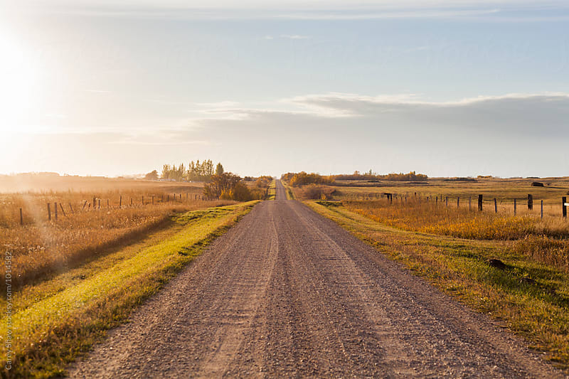 Gravel road through farm fields by Carey Shaw for Stocksy United