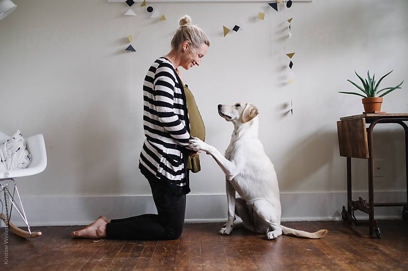 Pregnant woman with her white dog by Kristine Weilert for Stocksy United