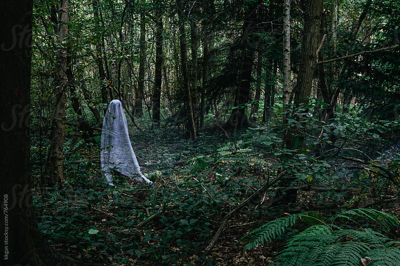 Halloween ghosts in the woods by kkgas for Stocksy United