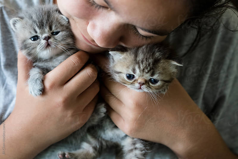 Cuddling with Kittens by Jill Chen for Stocksy United