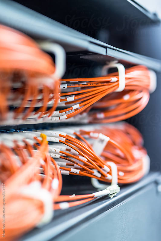 Close up of cables connected to a server by Maa Hoo for Stocksy United