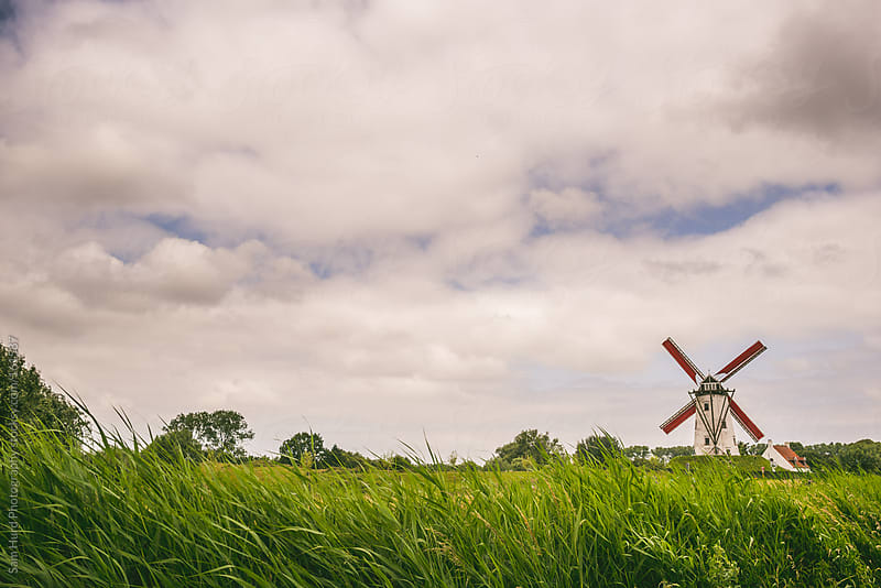 a windmill by Sam Hurd Photography for Stocksy United
