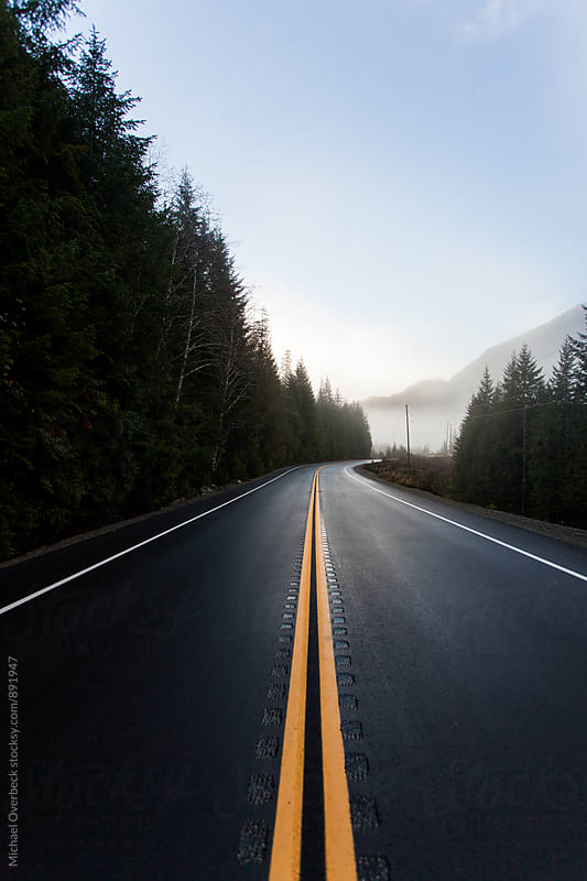 Road to Tofino by Michael Overbeck for Stocksy United