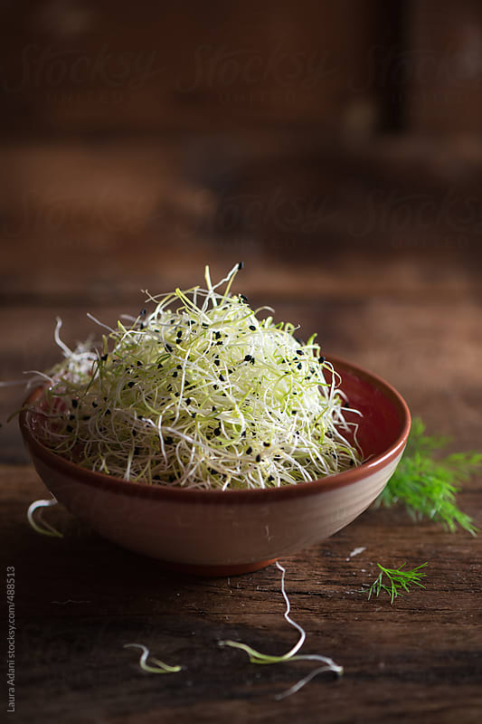 egg nog or zabaione with leek sprouts and wild fennel by Laura Adani for Stocksy United
