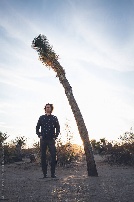 Tall Man Standing Next to Skinny Joshua Tree at Sunset by MEGHAN PINSONNEAULT for Stocksy United