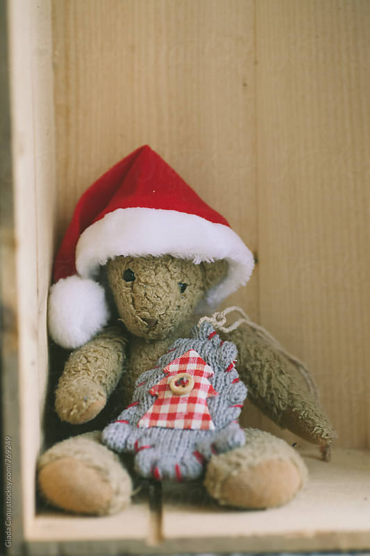Christmas bear by Giada Canu for Stocksy United