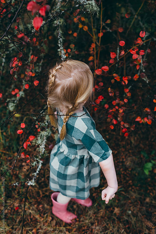 Little Girl with braids stands among the red leaves by Amanda Voelker for Stocksy United
