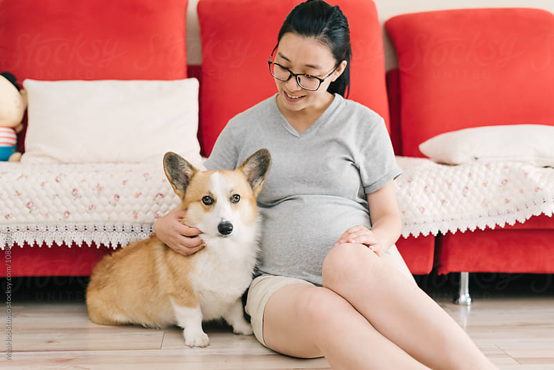 Pregnant woman and her dog at home by MaaHoo Studio for Stocksy United