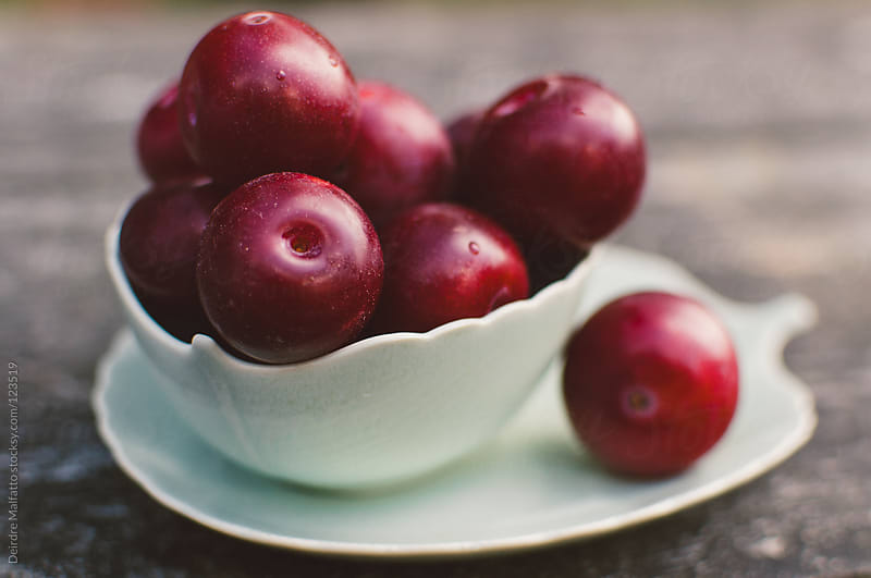 small dish of tiny fresh red plums by Deirdre Malfatto for Stocksy United