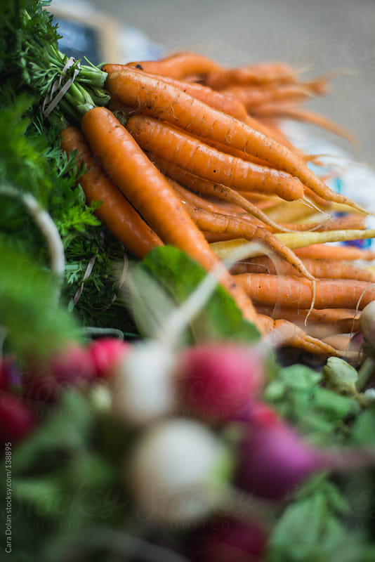 Carrots and radishes for sale at a farmer's market by Cara Dolan for Stocksy United
