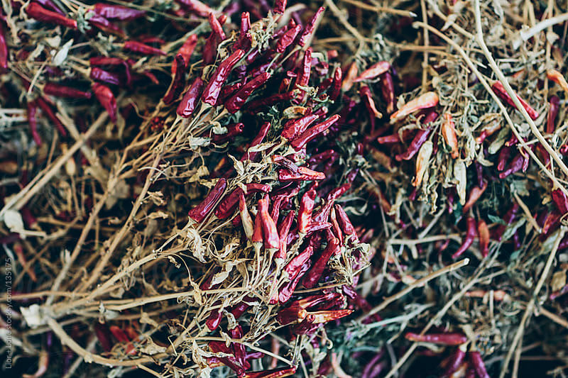 Bunch of organic red dry chilies by Lior + Lone for Stocksy United