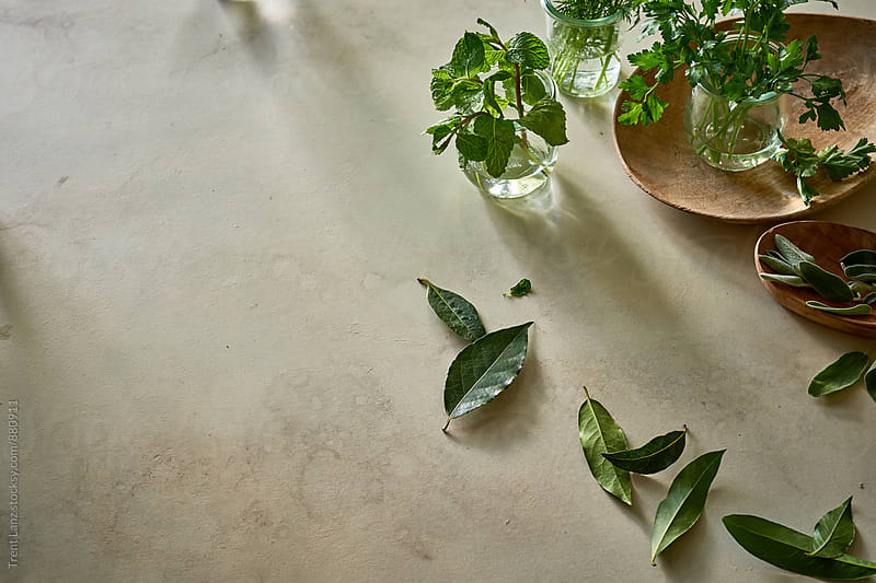 Different herbs on plaster table for wellness by Trent Lanz for Stocksy United