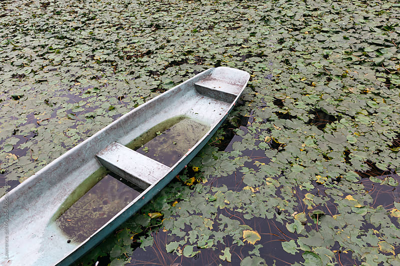 Abandoned boat in a man-made pond full of water lily pads by Lawrence del Mundo for Stocksy United