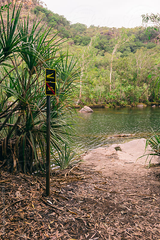 beware of crocodiles, no swimming sign by Gillian Vann for Stocksy United