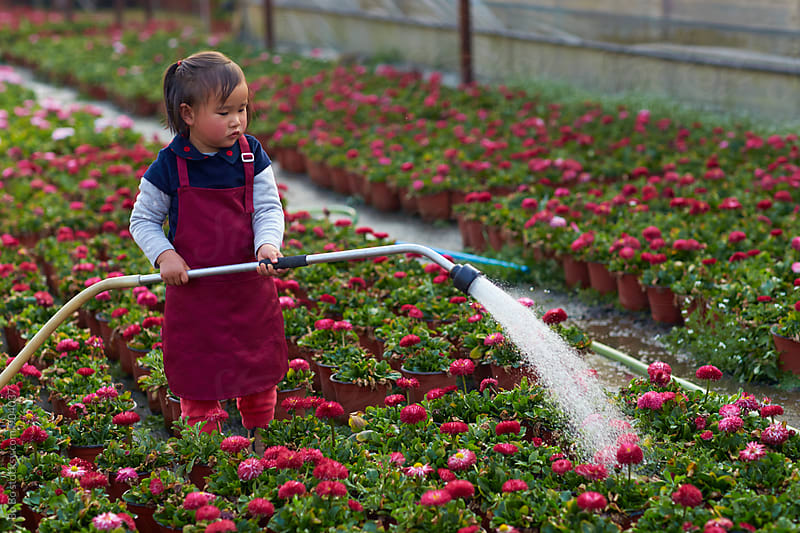 little girl watering in the garden by cuiyan Liu for Stocksy United