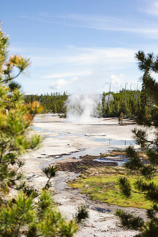 Geothermal activity in Yellowstone National Park by michela ravasio for Stocksy United