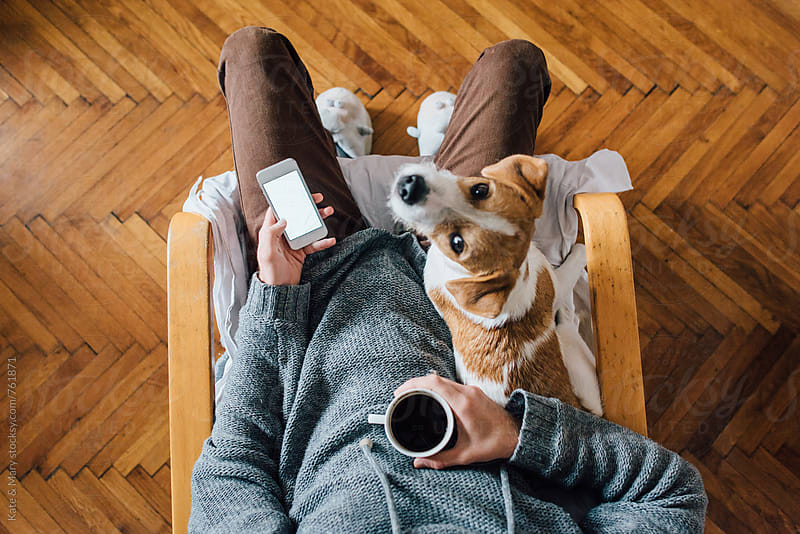 Man sitting with molly dog and holding mobile phone by Katarina Simovic for Stocksy United