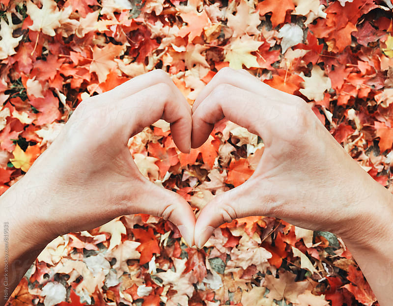 Autumn leaf love with hand made heart by Holly Clark for Stocksy United
