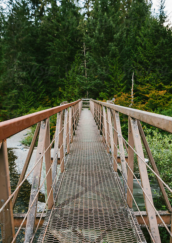 Bridge over a river in a forest. by kkgas for Stocksy United