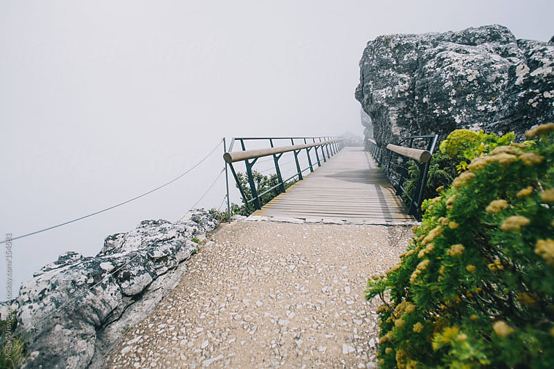 Raised walkway in the mist on Table Mountain by Micky Wiswedel for Stocksy United