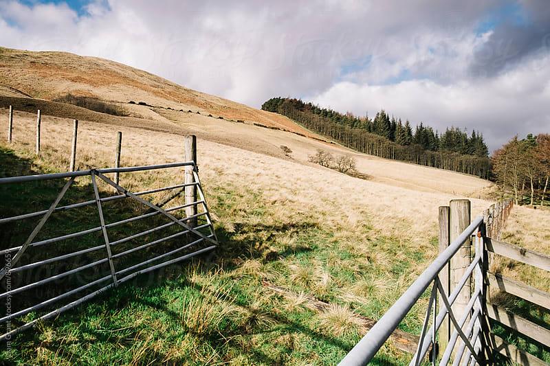 Farm gates on a sunlit hillside. Derbyshire, UK. by Liam Grant for Stocksy United