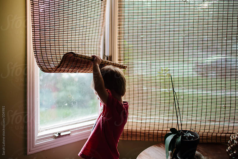 a little boy looking out of a bay window under a shade by Sarah Lalone for Stocksy United