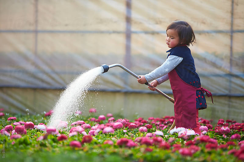 little asian girl watering flower in the garden by Bo Bo for Stocksy United