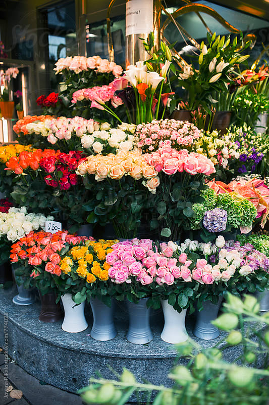 Colorful flowers in the street by Jovana Rikalo for Stocksy United