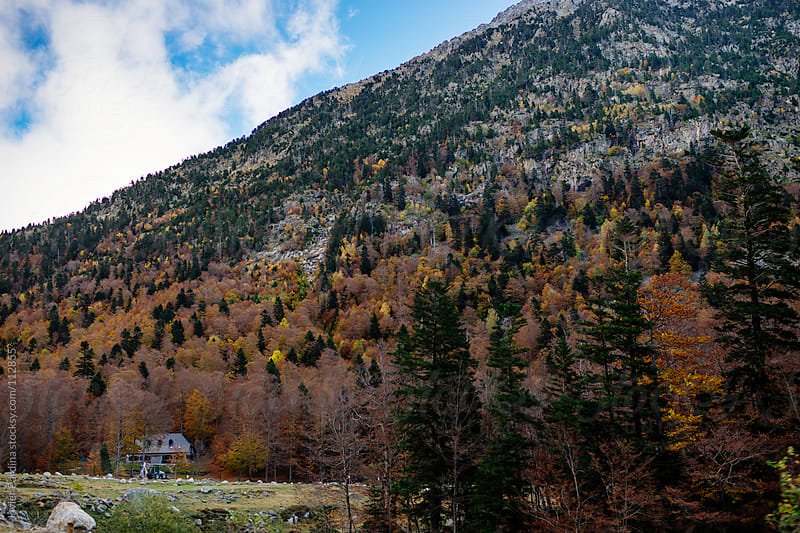 mountain scenery in autumn by Javier Pardina for Stocksy United