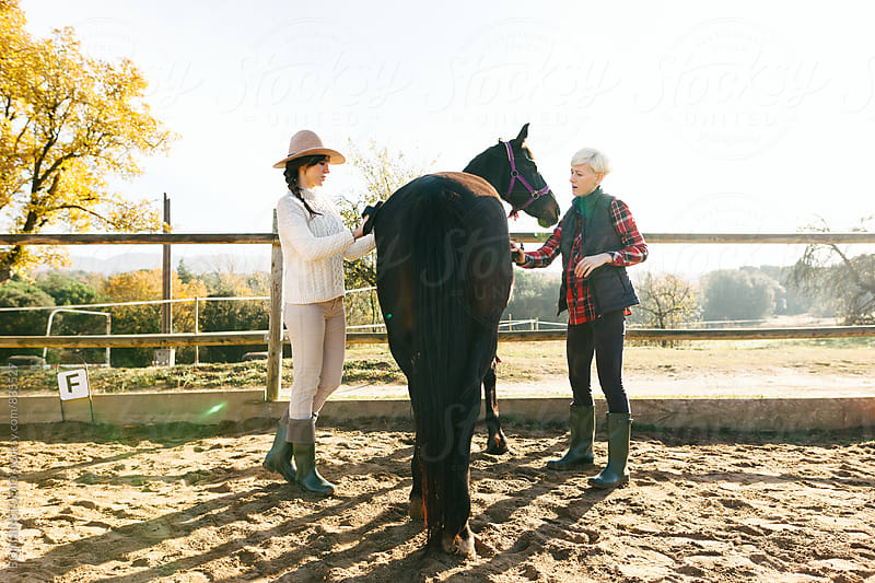 Women brushing their horse in a ranch on a sunny day. by BONNINSTUDIO for Stocksy United