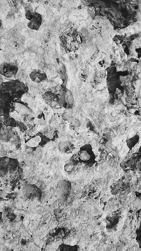 rocks by Magida El-Kassis for Stocksy United