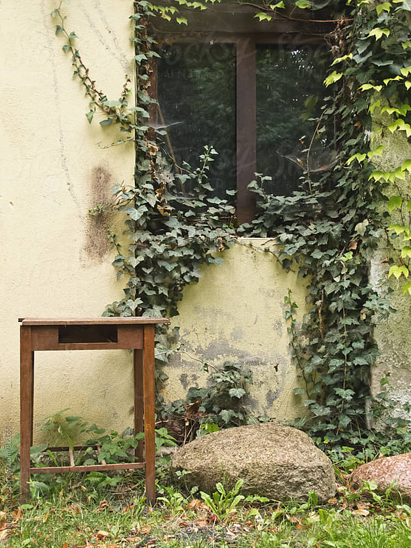 old decaying building with overgrown window and table before it by Melanie Kintz for Stocksy United