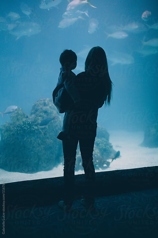 Trip to the Aquarium  by Gabrielle Lutze for Stocksy United
