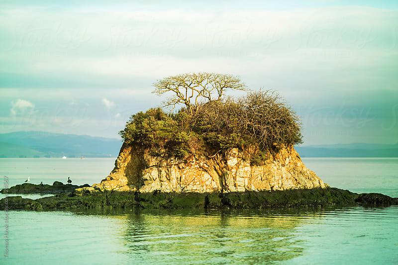 Lone Island, China Beach, San Rafael, CA by Thomas Hawk for Stocksy United