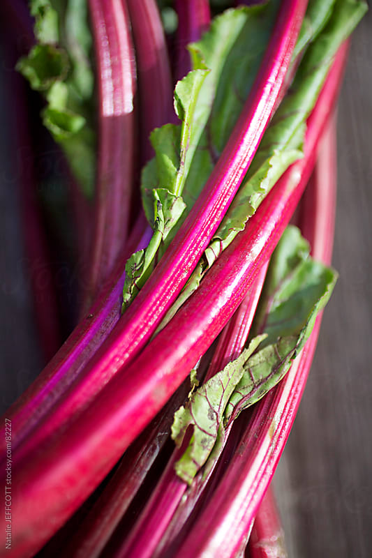 beetroot stalks vertical by Natalie JEFFCOTT for Stocksy United