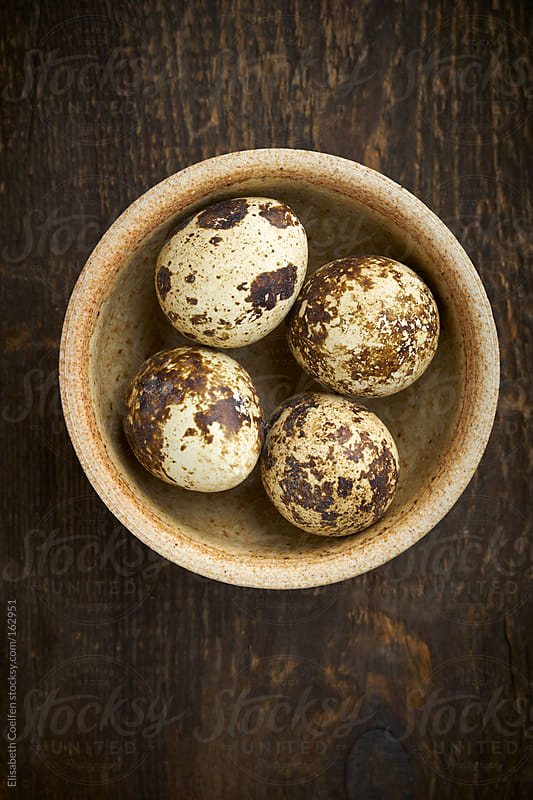 Quail eggs in a bowl by Elisabeth Coelfen for Stocksy United