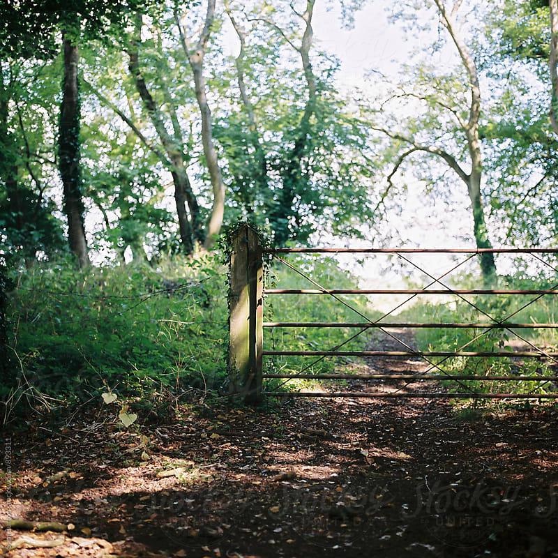 Countryside gate by Sam Burton for Stocksy United