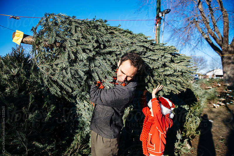 Family selects their Christmas tree by Cara Dolan for Stocksy United