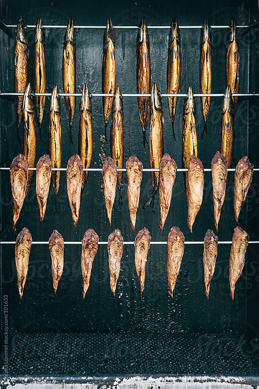 Kippers by Claudia Lommel for Stocksy United