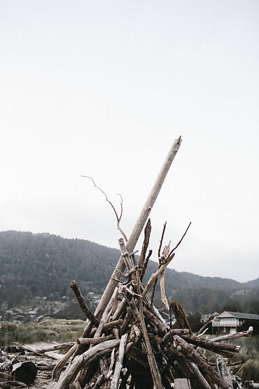 top of driftwood fort on the oregon coast by Nicole Mason for Stocksy United