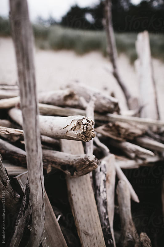 driftwood fort made on the beach by Nicole Mason for Stocksy United