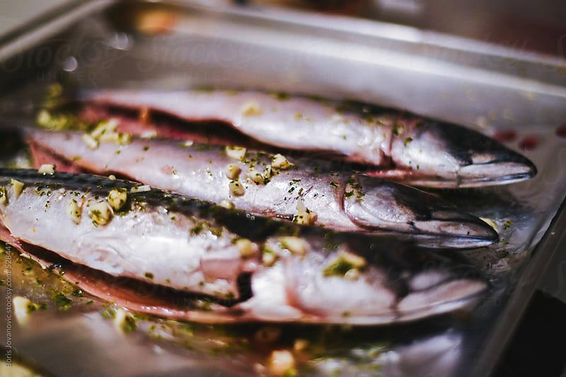 Raw fish ready for owen by Boris Jovanovic for Stocksy United