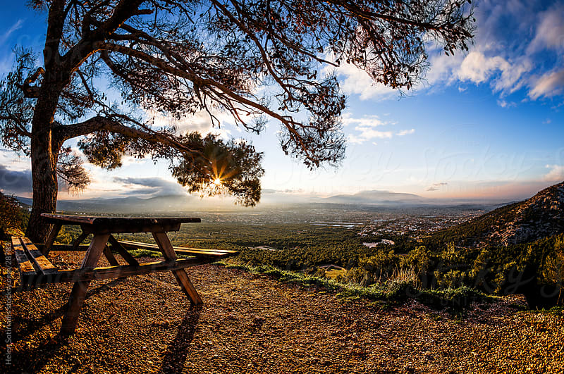sunrise with tree and picnic table by Helen Sotiriadis for Stocksy United