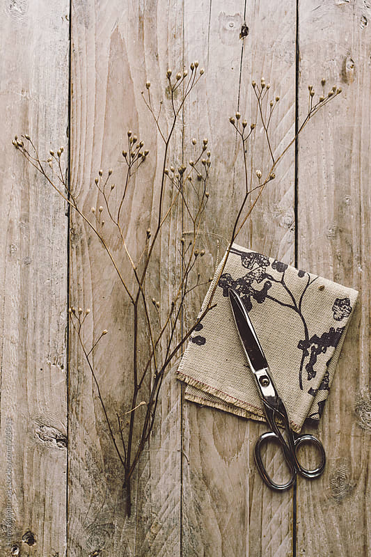 Dried flowers, linen and scissors. by Helen Rushbrook for Stocksy United