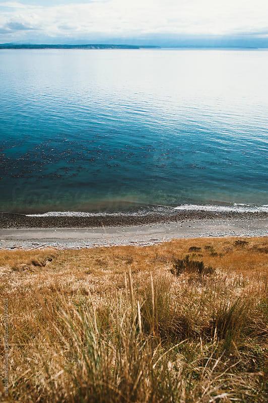 Oceanside Island in Washington by michelle edmonds for Stocksy United