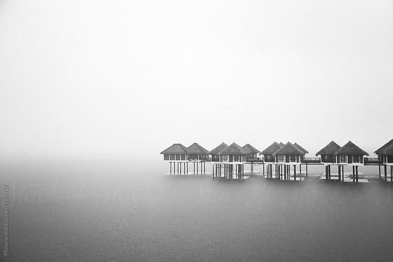 Houses on the Water on a Foggy Day by Mosuno for Stocksy United