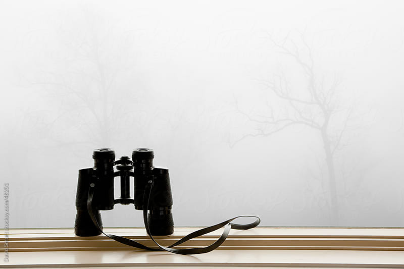 Binoculars sitting on a windowsill with leafless trees shrouded in fog in the background. by David Smart for Stocksy United
