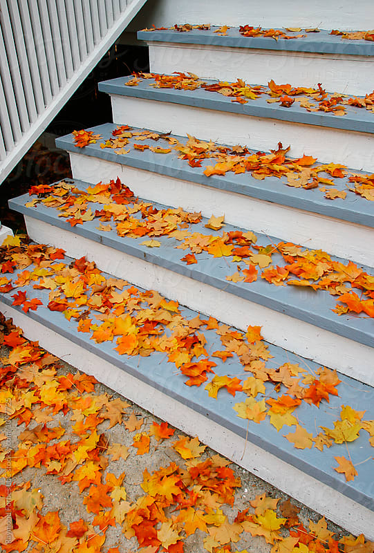 Autumn Leave on Porch  by Raymond Forbes LLC for Stocksy United